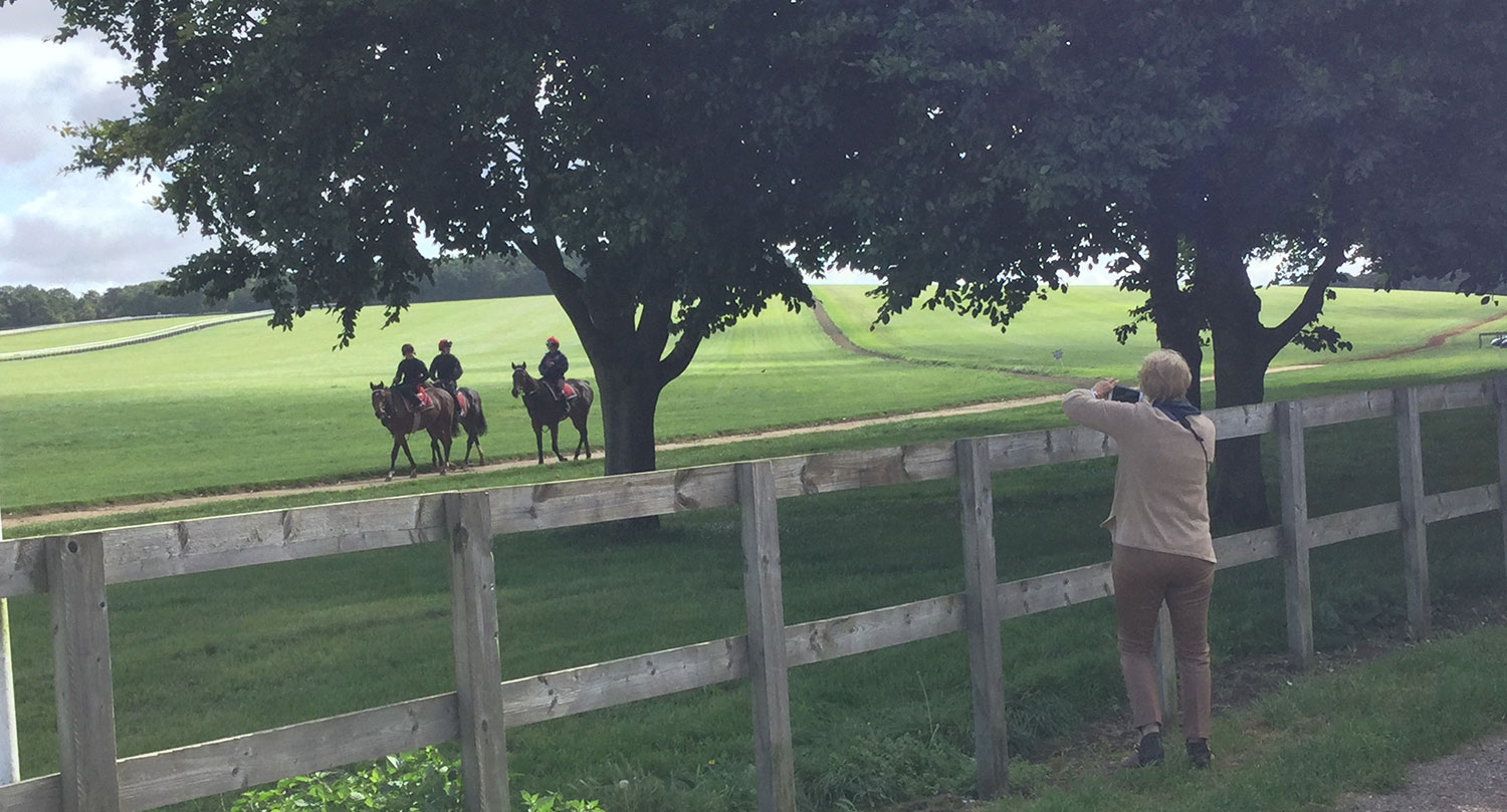 VISITING NEWMARKET RACE GALLOPS WITH CLIENTS