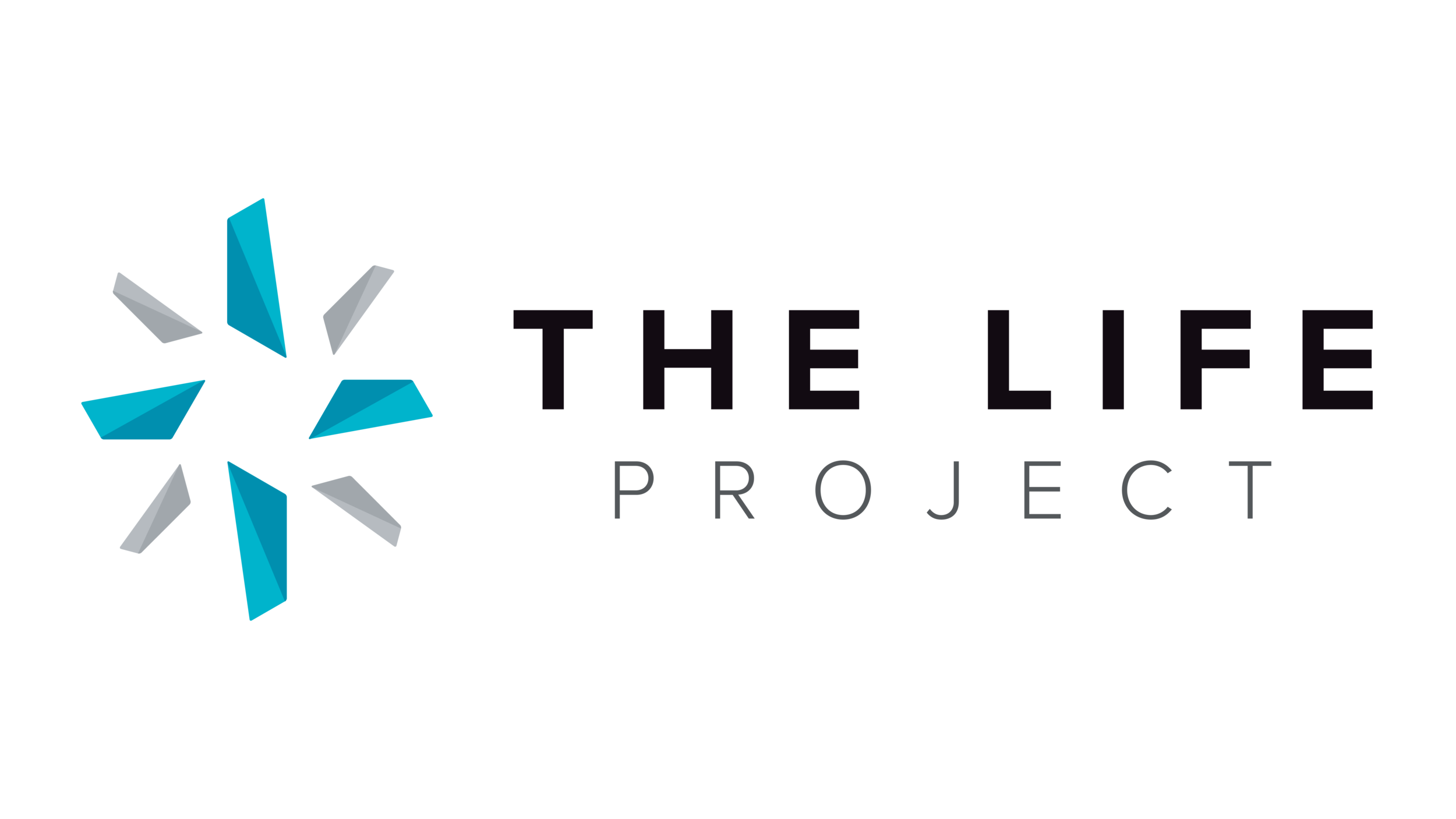 The Life Project-01.png