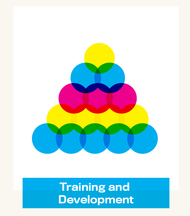 training and development.png