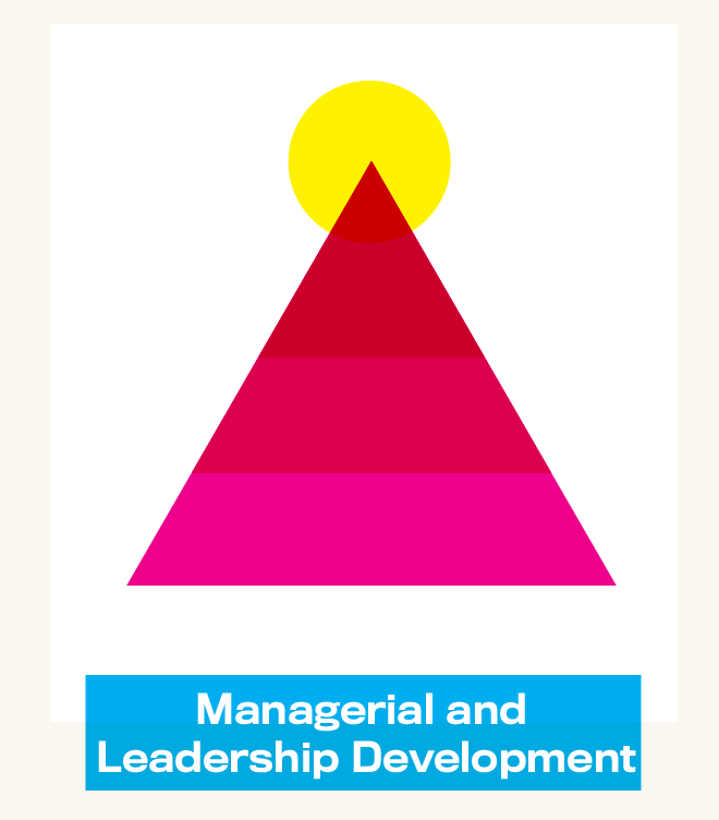 managerial and leadership development.png