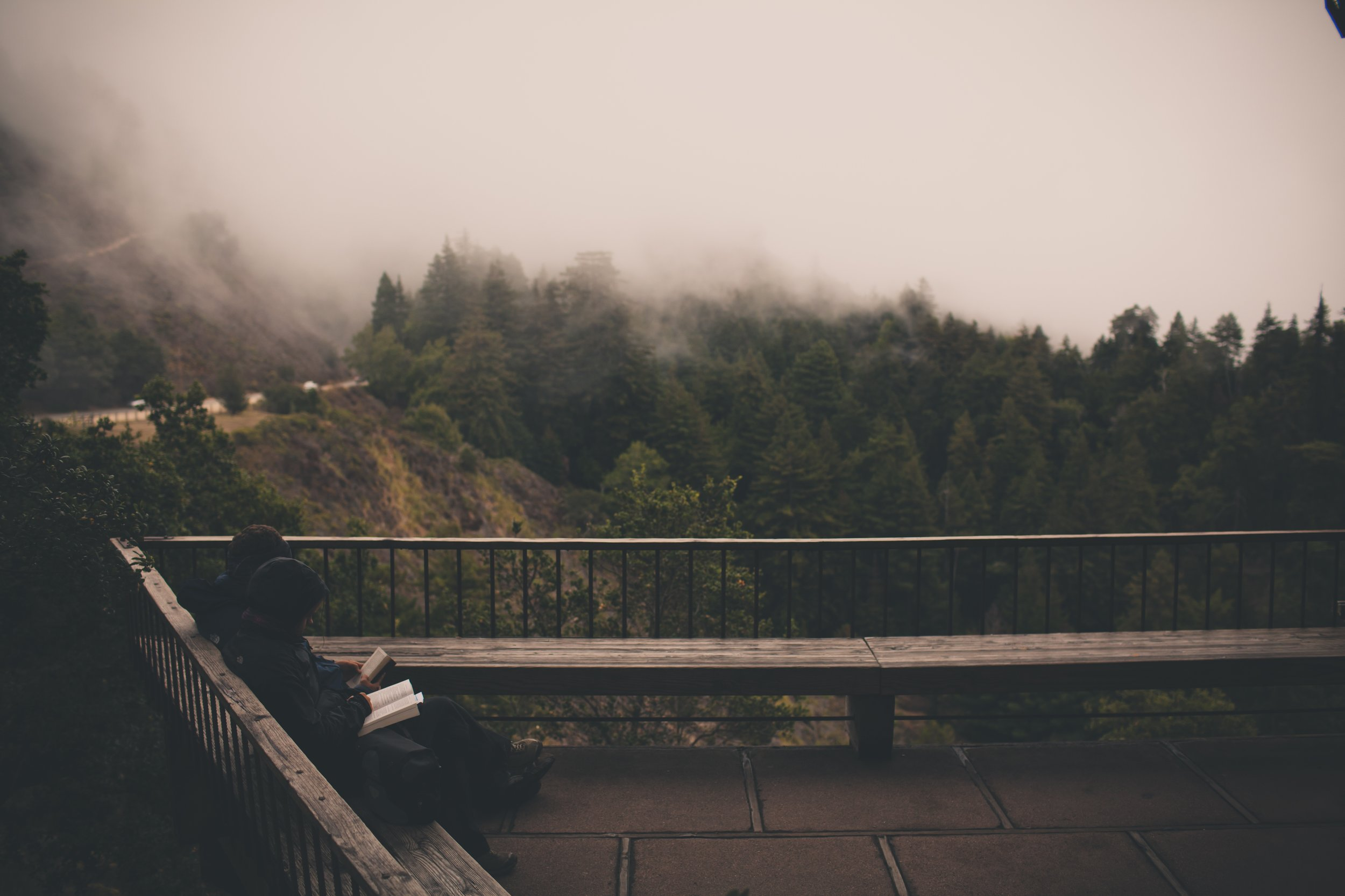 foggy-read.jpg
