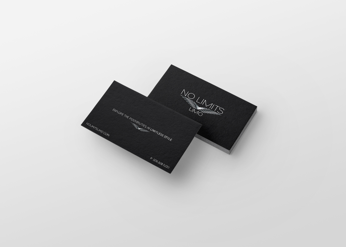 Courier and Travel Service Brand Identity