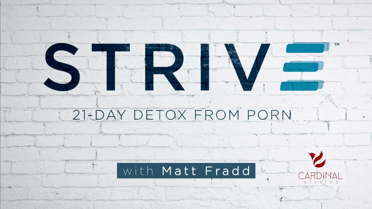 Strive - Matt Fradd