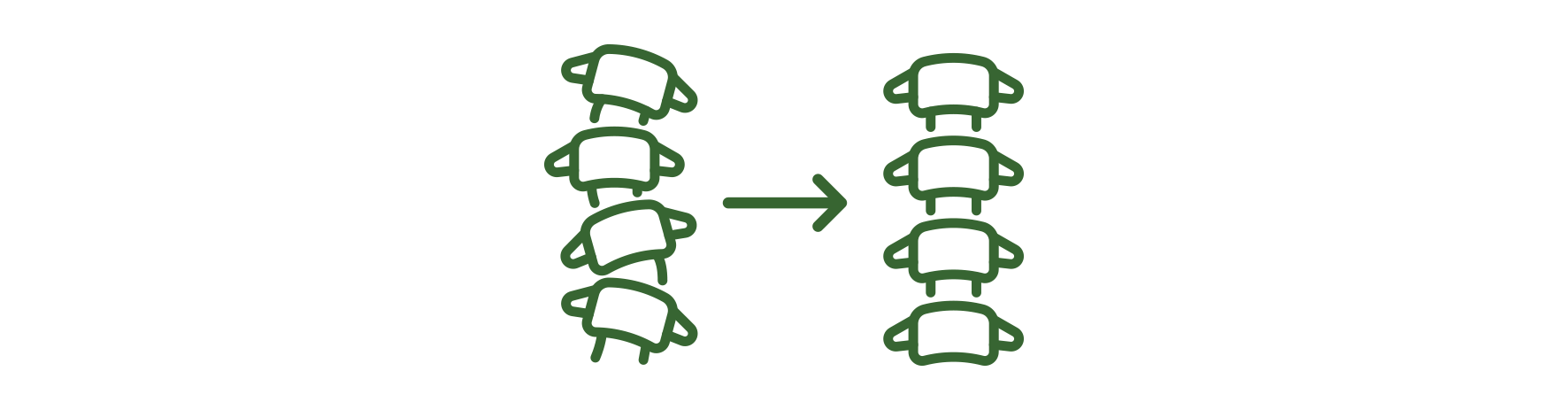 Align Spine Family Chirorpactic Bundaberg.png