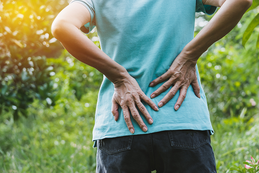 Lower back pain chiropractic.jpg