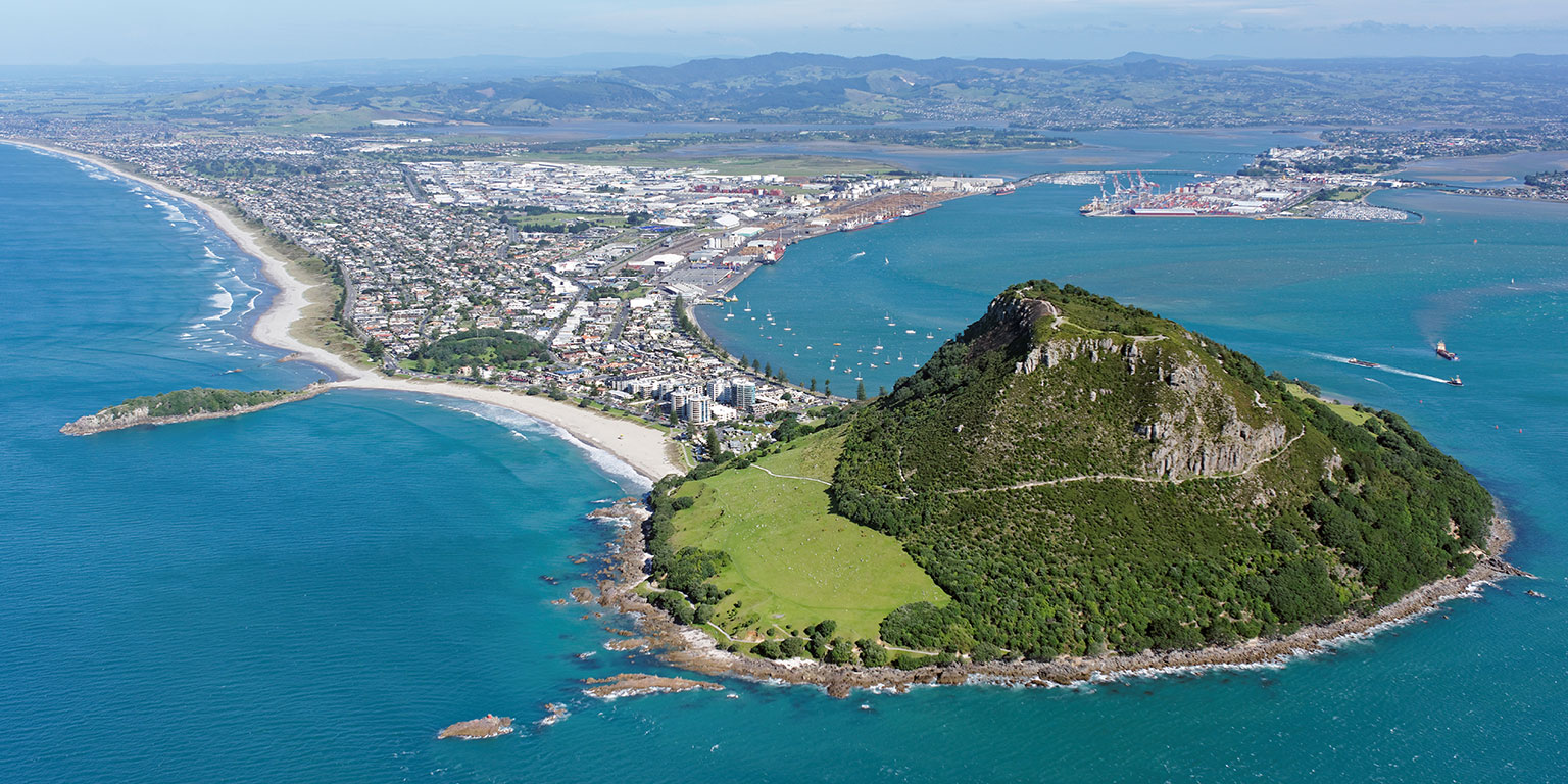 Locally Based. - We love building sites for anyone in New Zealand but we try to take jobs in the Bay of Plenty region as this means we are close to our clients and can provide instant support.