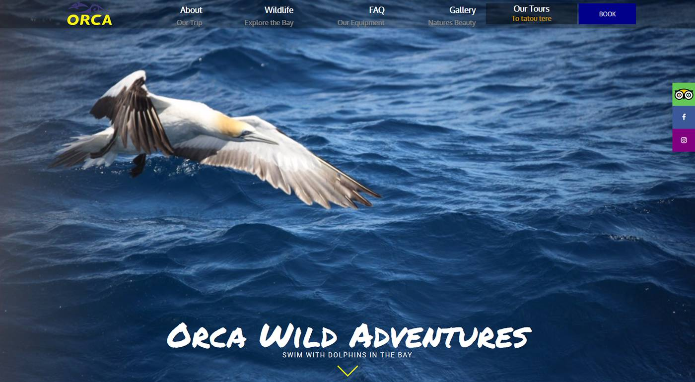 Orca Wild Adventures - Orca Wild Adventures is an eco-tourism Dolphin Tour. They needed a new site to reach out to more customers around the world.