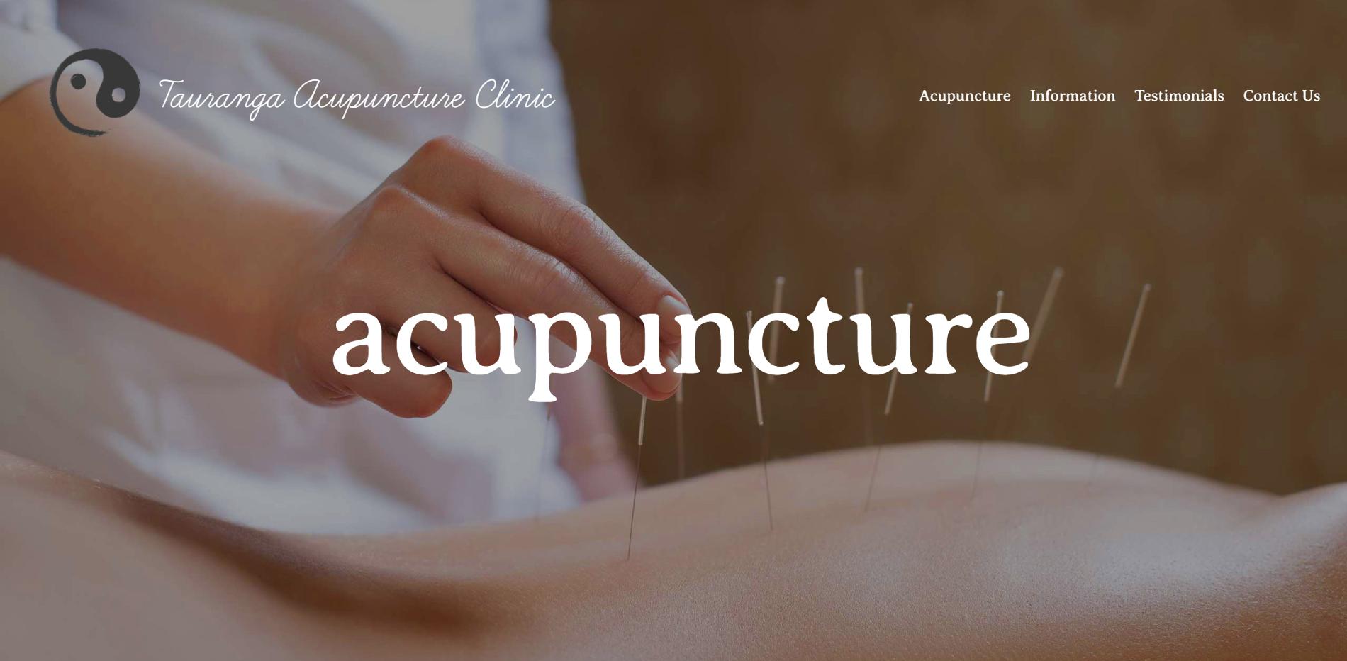 acupuncture portfolio website.PNG