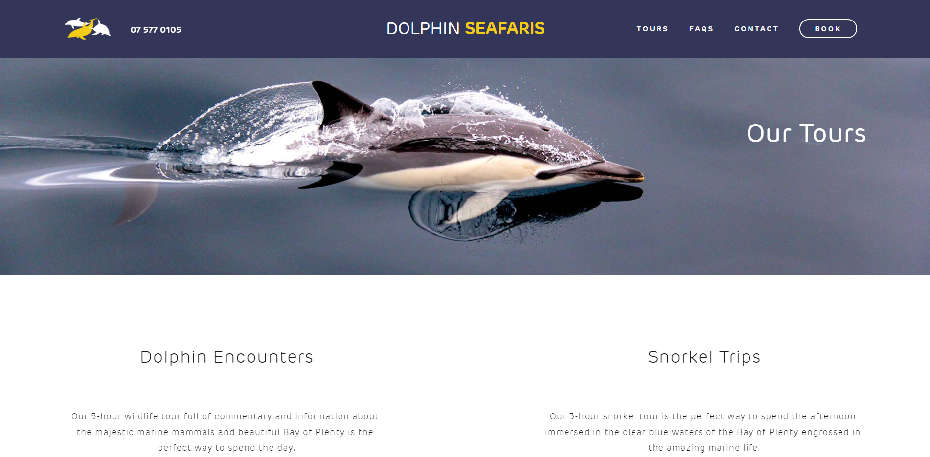 dolphin seafaris website developement bookings.PNG