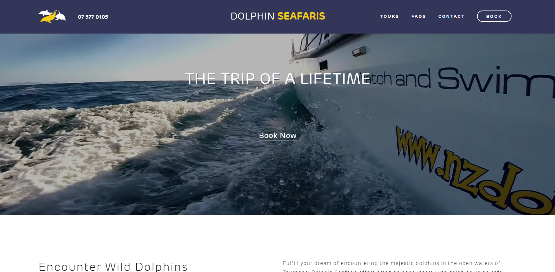 Dolphin Seafaris - Dolphin tour operator Dolphin Seafaris came to us with a site redesign in mind and we quickly came up with a beautiful simplistic new site design.