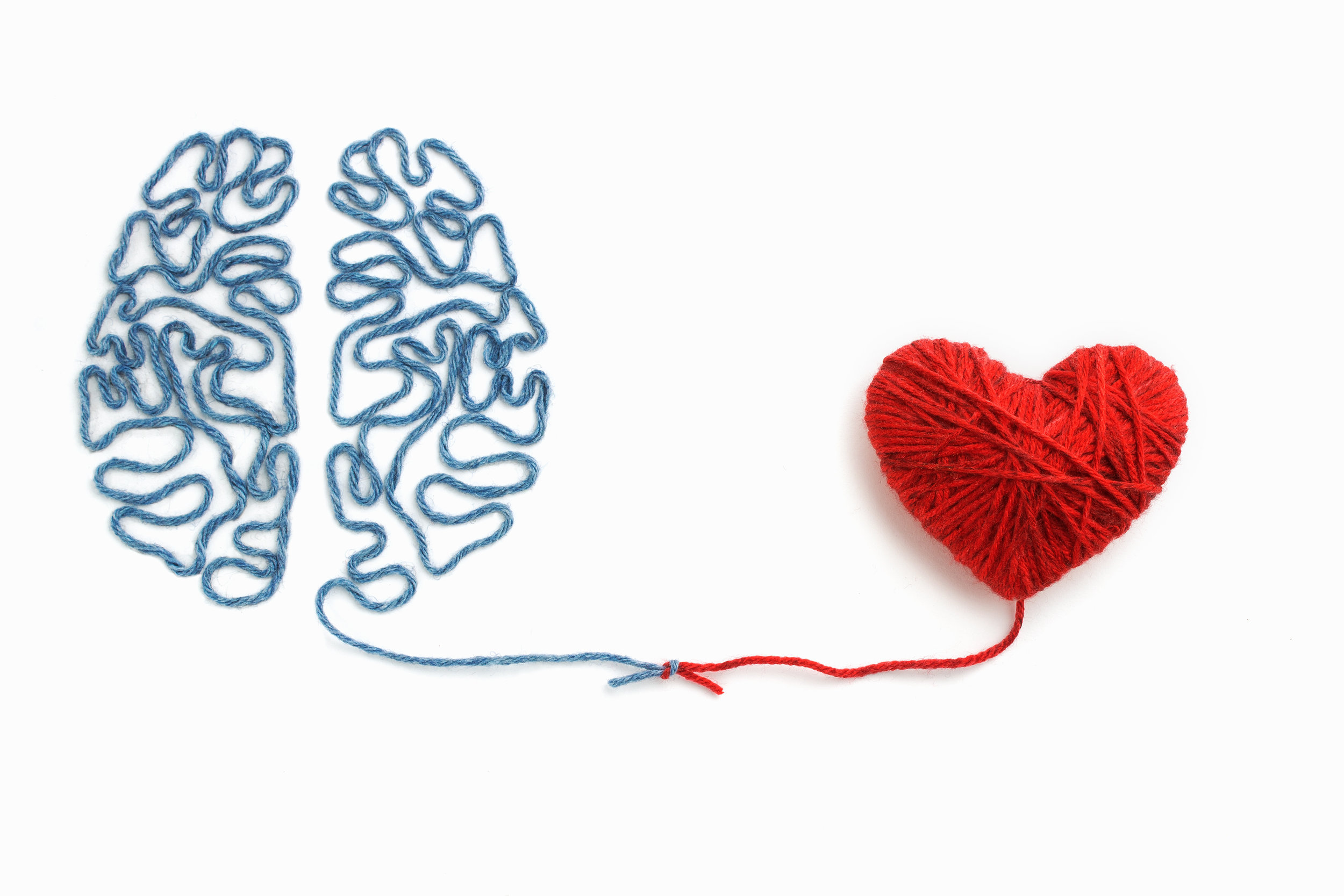 Using cutting edge and innovative techniques like Functional Neurology, NeuroEmotional Technique (NET) and BioGeometric Integration (BGI) we help RECONNECT you to the healthy, vibrant you.