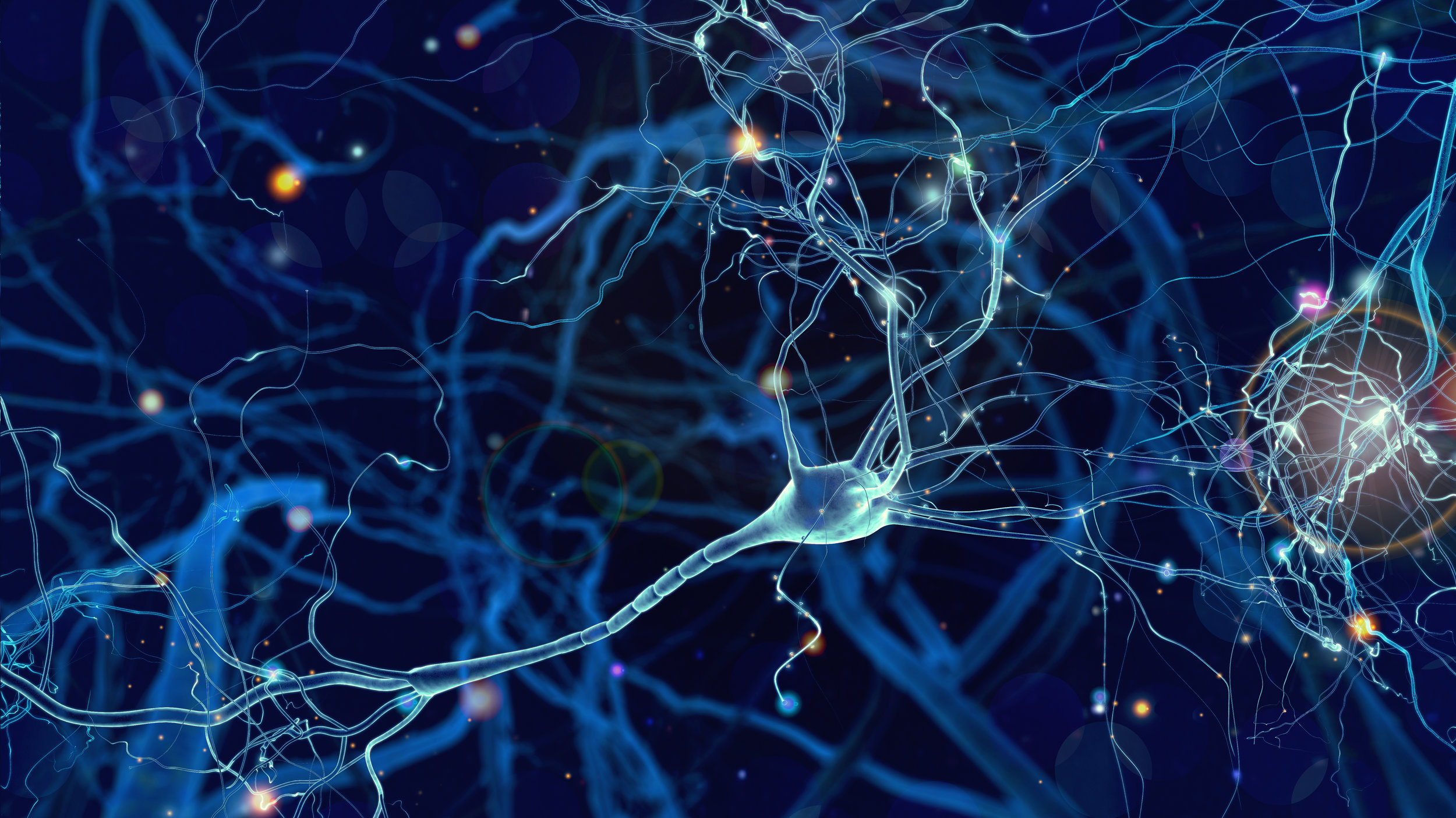 This is a beautiful picture of the neurons or cells in your brain. As you can see each cell has lots of little connections that it can form. When it forms the right connections our brains and health is great. However, if they form bad connections, that is when we get sick or our bodies don't work so well. We utilize techniques to break bad connections and RECONNECT healthier ones to help you restore your health!