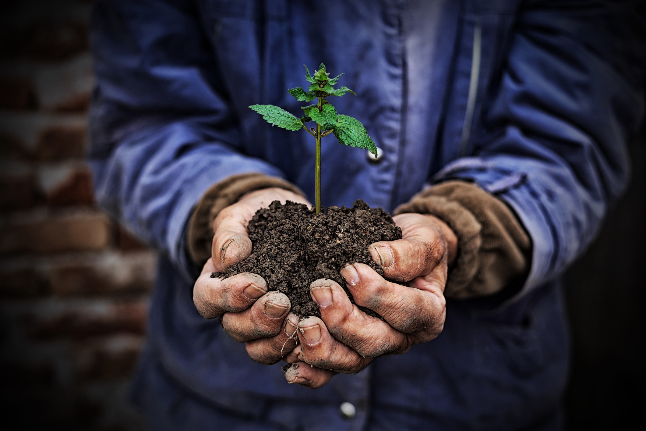 AgTech to avoid loss & boost yield