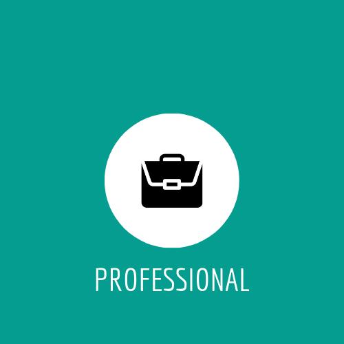 Professionall (1).jpg