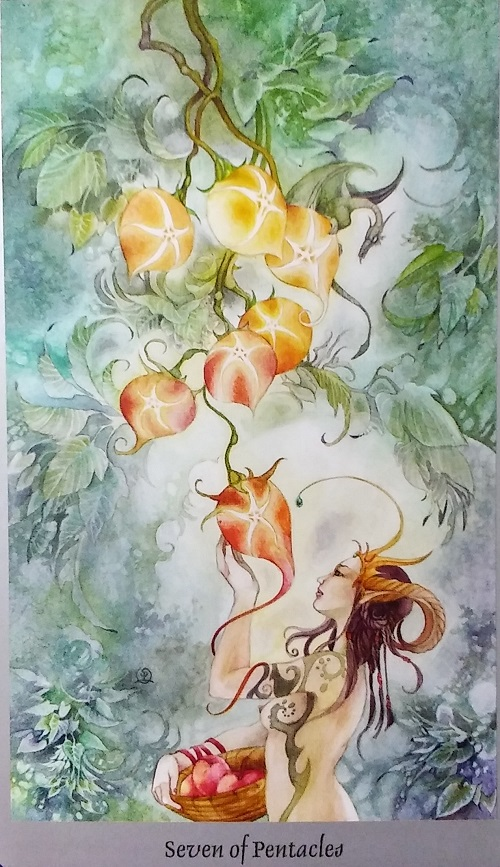 Seven of Pentacles ~ Shadowscapes Tarot, created by Stephanie Pui-Mun Law, published by Llewellyn Publishing.