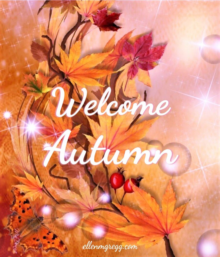 Welcome Autumn 2019
