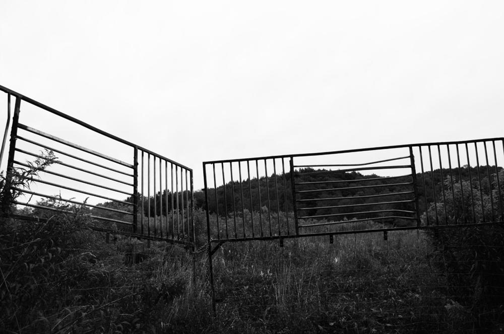joanna-valente-separation.png