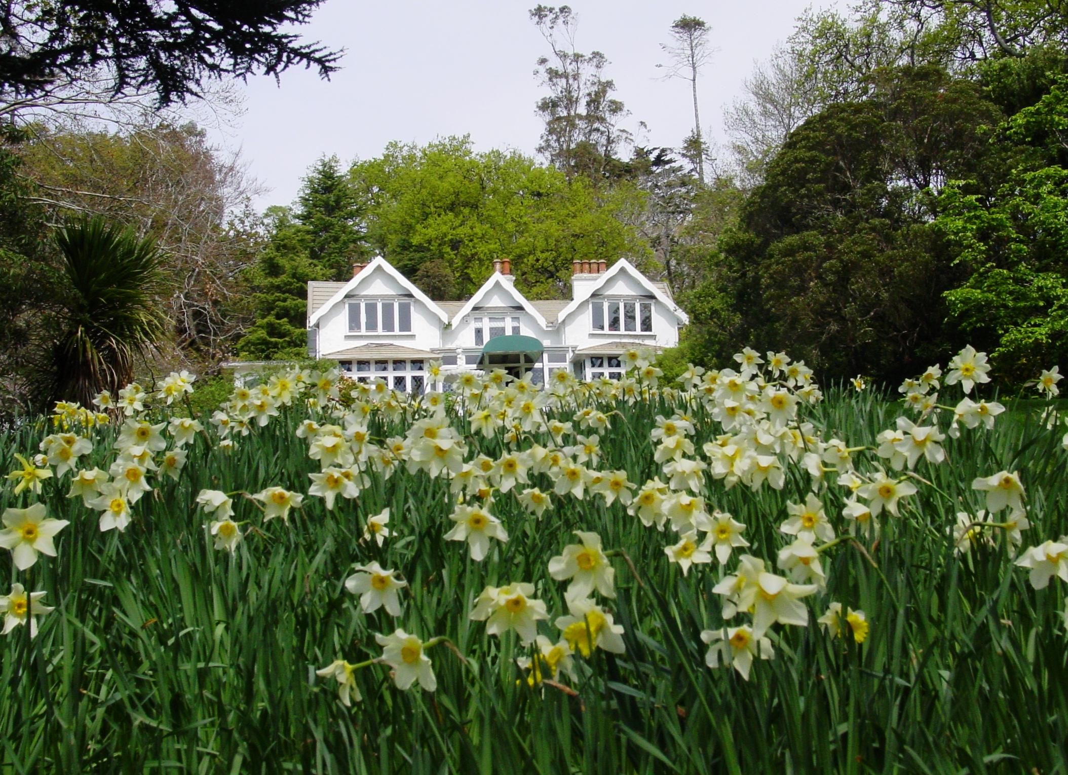 Visit the beautiful gardens - Larnach castle & gardensGlenfalloch Gardens & Cafe