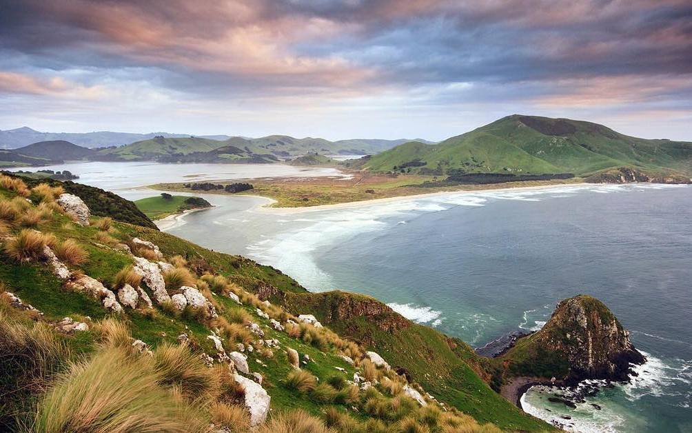 Explore the wild landscapes - There are many amazing coastal walks nearby including Allans Beach, Victory Beach and Sandfly Bay where sealions are often basking on the sand. The views from Harbour cone are stunning.Walking Tracks Guide - Dunedin City CouncilWalking Track Guide - D.O.C