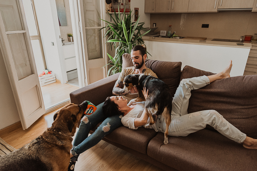 home_session_with_dogs-12.JPG