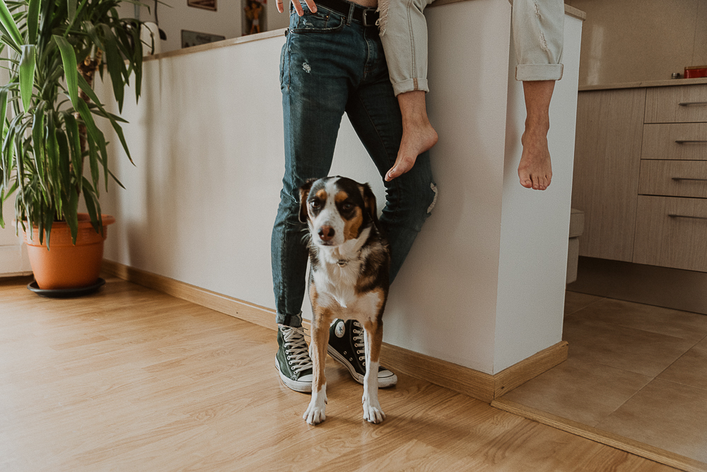 home_session_with_dogs-61.JPG