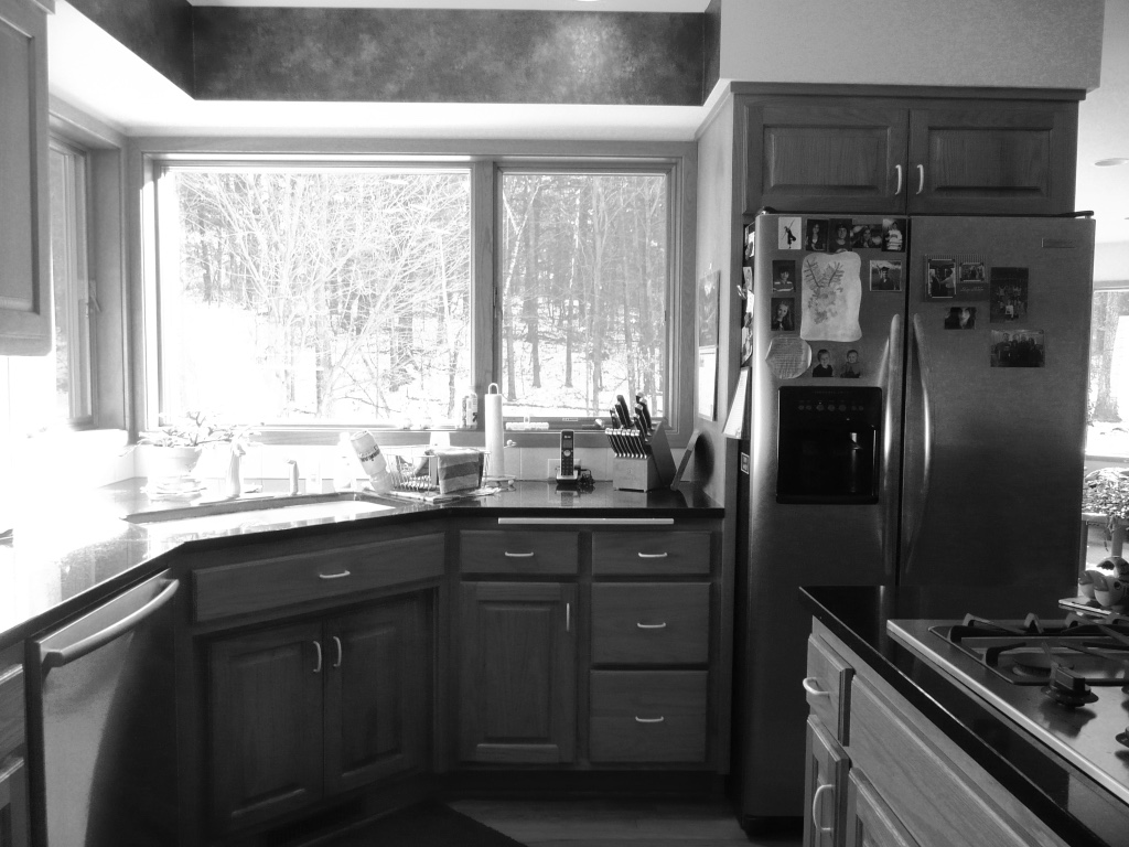 Contemporary Kitchen Remodel | Before