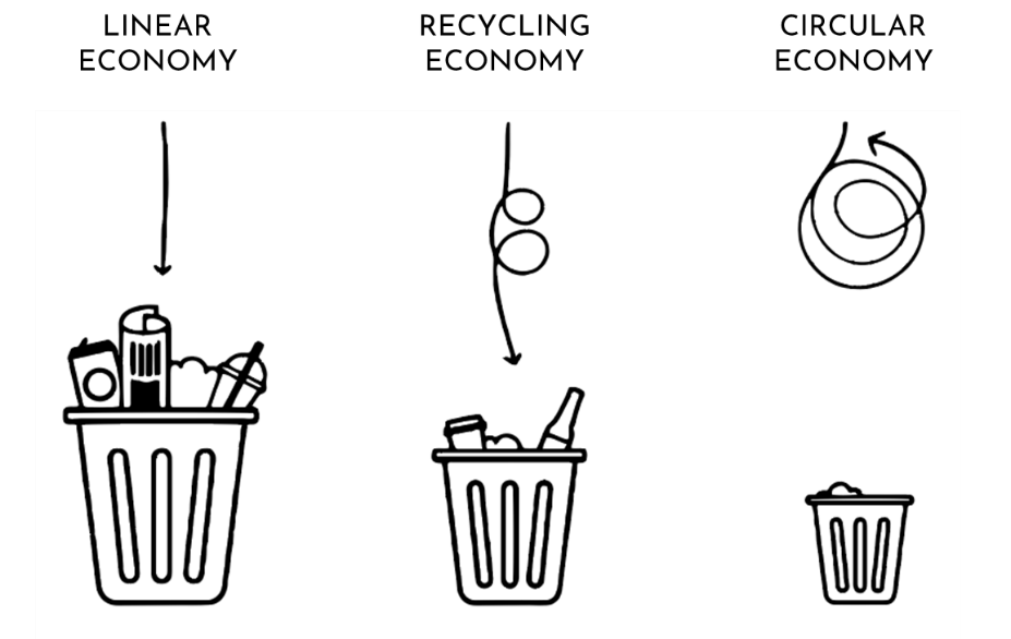Linear and circular economy.png