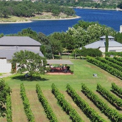 Stone House Vineyard -