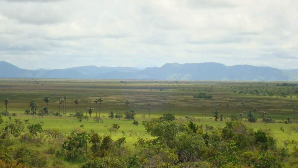 El Dorado: the savannas and wetlands betwee Yupukari and Quatata villages, fronting the Kanuku mountains