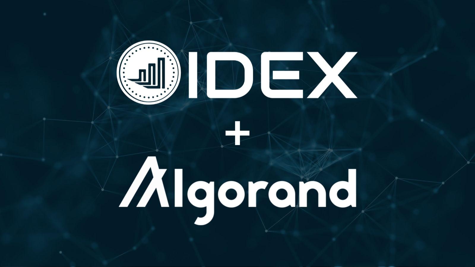 IDEX Algorand Announcement.jpg