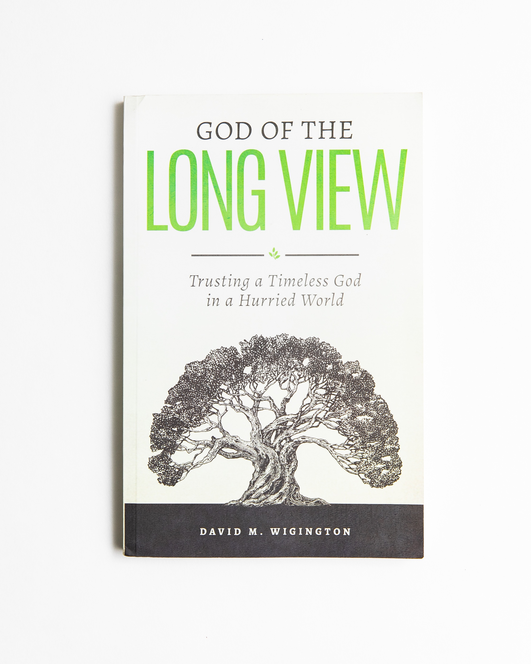 God of the Long View  by independent author David M. Wigington