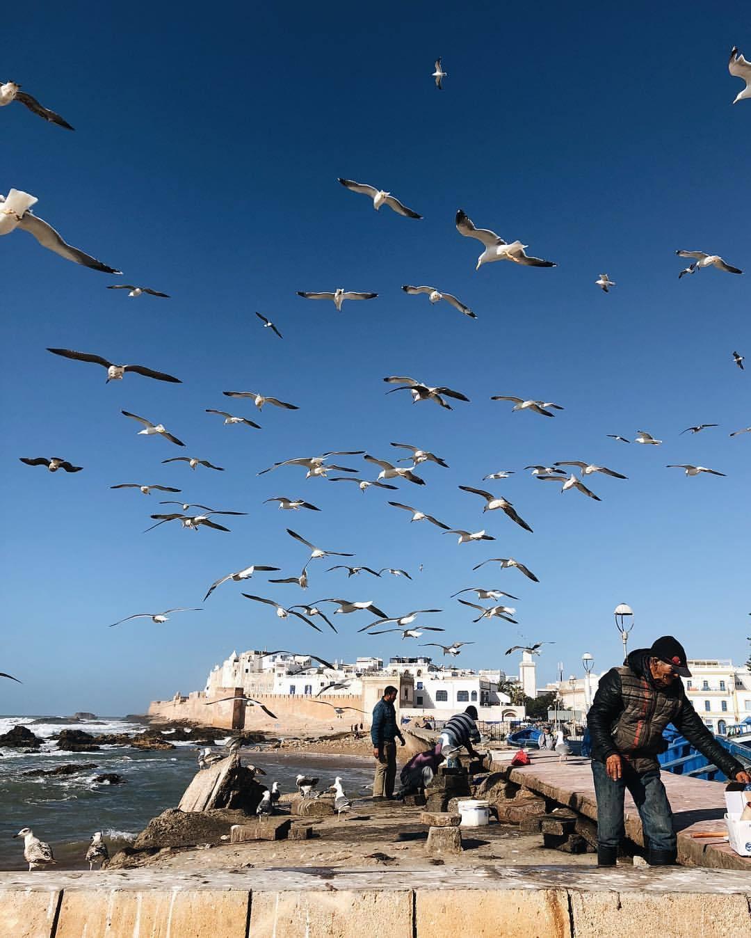 at Essaouira