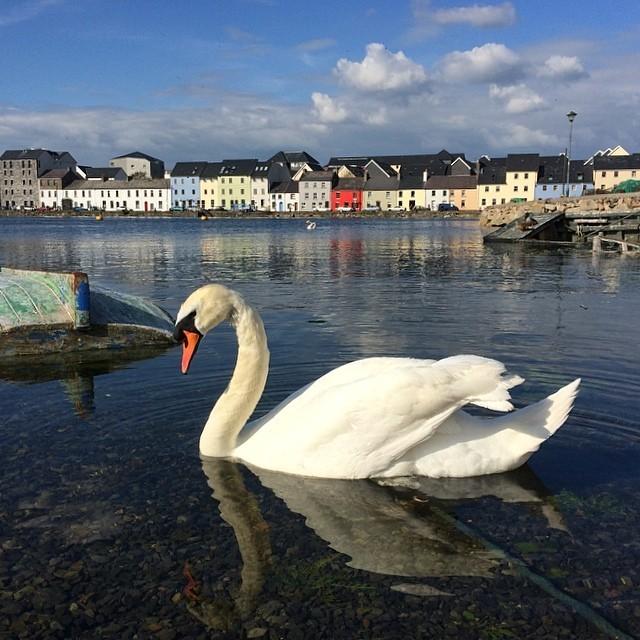 at Galway Bay, Ireland