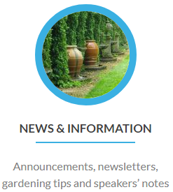 newsandinfo-button.png