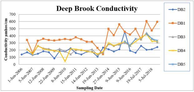 Deep Brook Conductivity.JPG