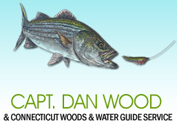 Captain Dan Wood -