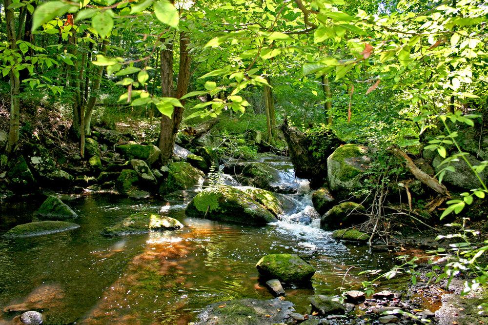 Deep Brook