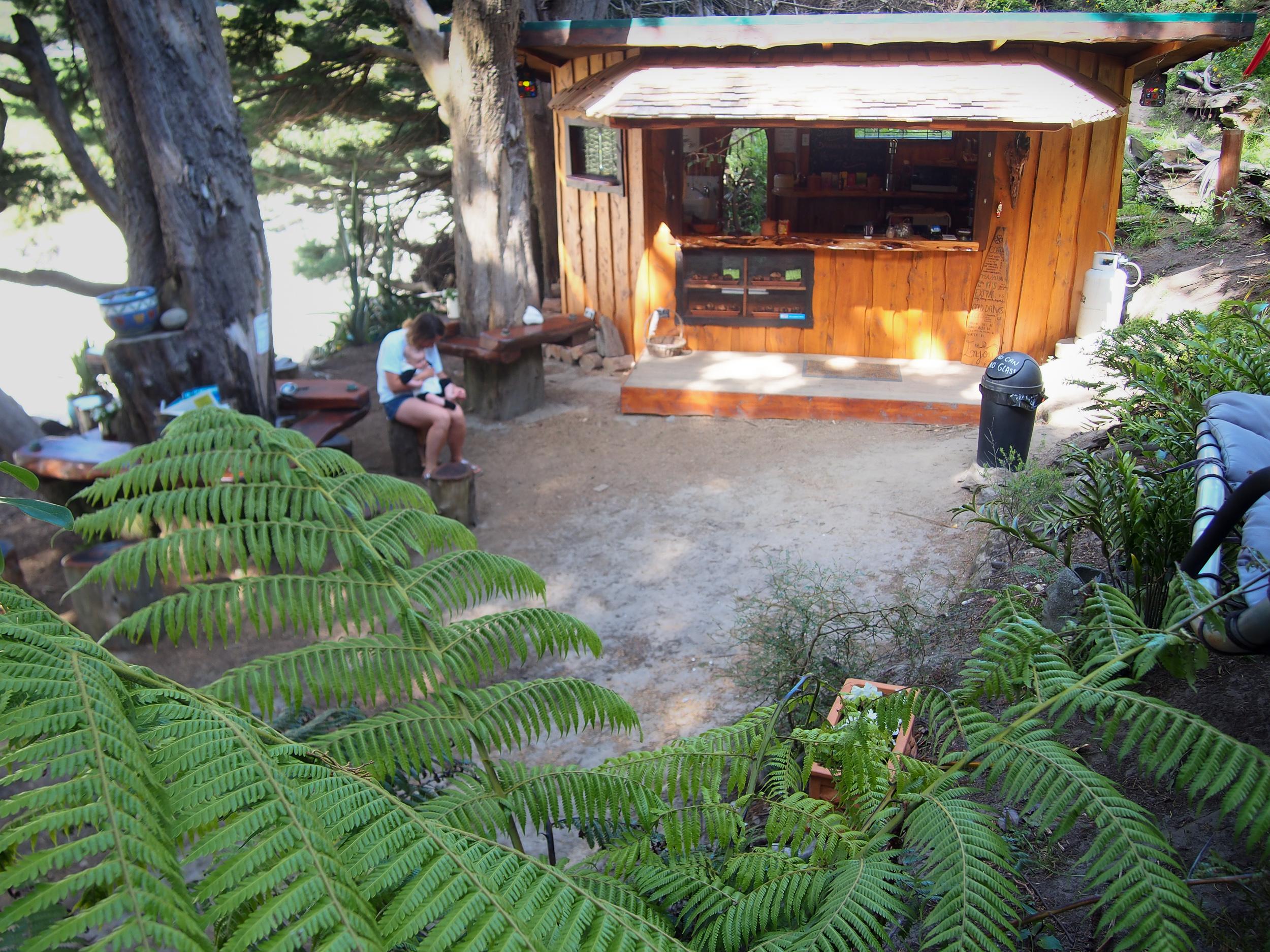 wharariki-beach-holiday-park-coffee-shop-cafe.jpg