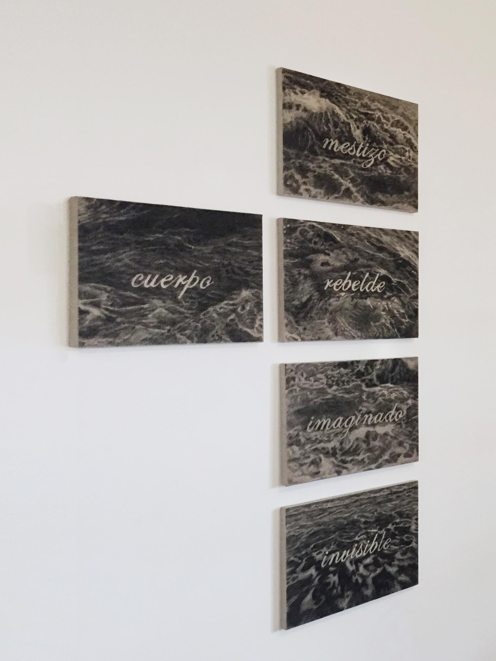 Otras deseos   Dibujo en carbón vegetal sobre tela  Políptico  0.50 m x 0.35 m (cada uno)