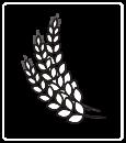 Copy of Copy of nantahala-brewing-sylva-icon-hops1.png