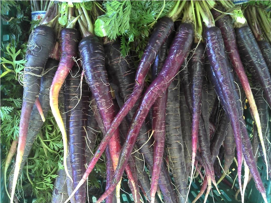 Huerta orgánica La Anunciación - Verduras y aromaticas organicasLa Plata