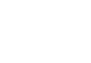 SIOO-logo+ZW.png