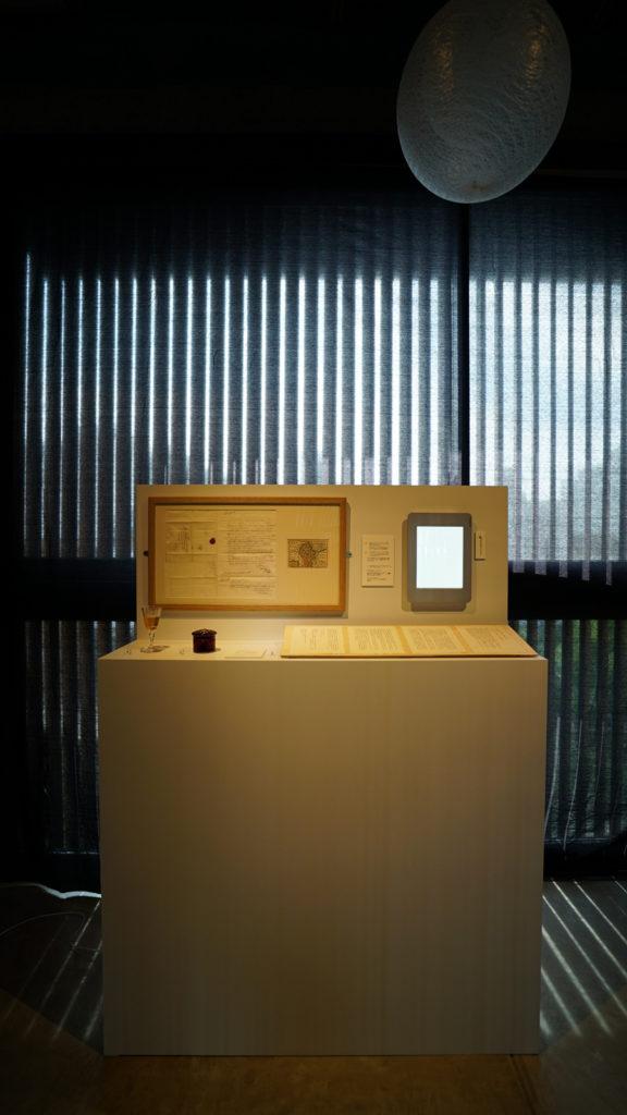 Image 1: Viola Odorata installation- Forum Kyoto Gallery