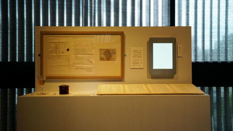 Image 2: Viola Odorata installation