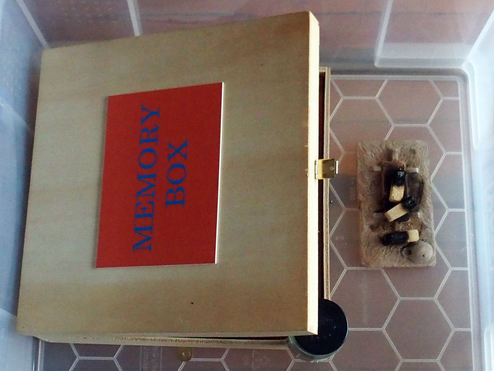 8-Memory-Box-Smoking-the-box-with-pinon-incense.jpg