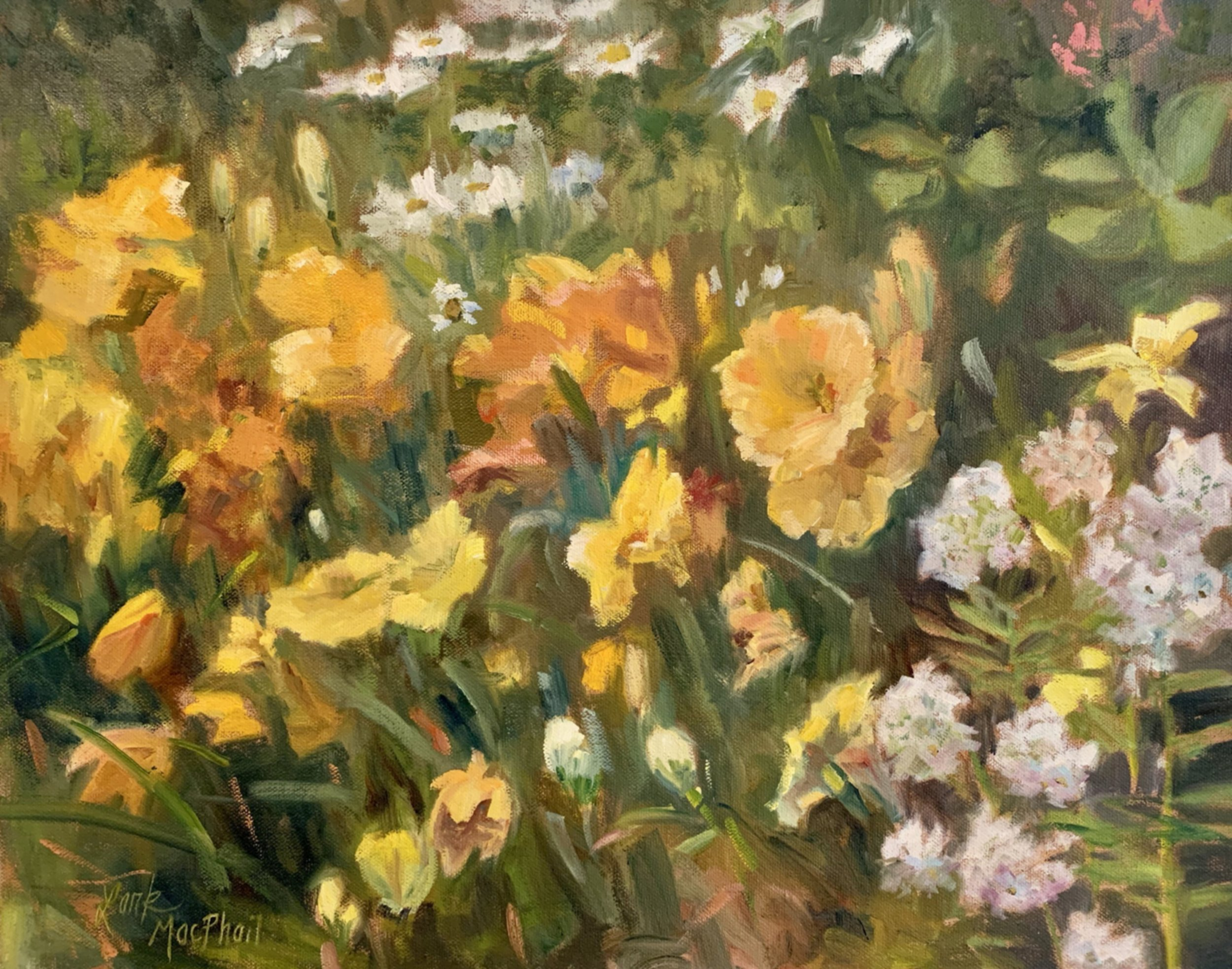 Yellow Lillies 16 x 20