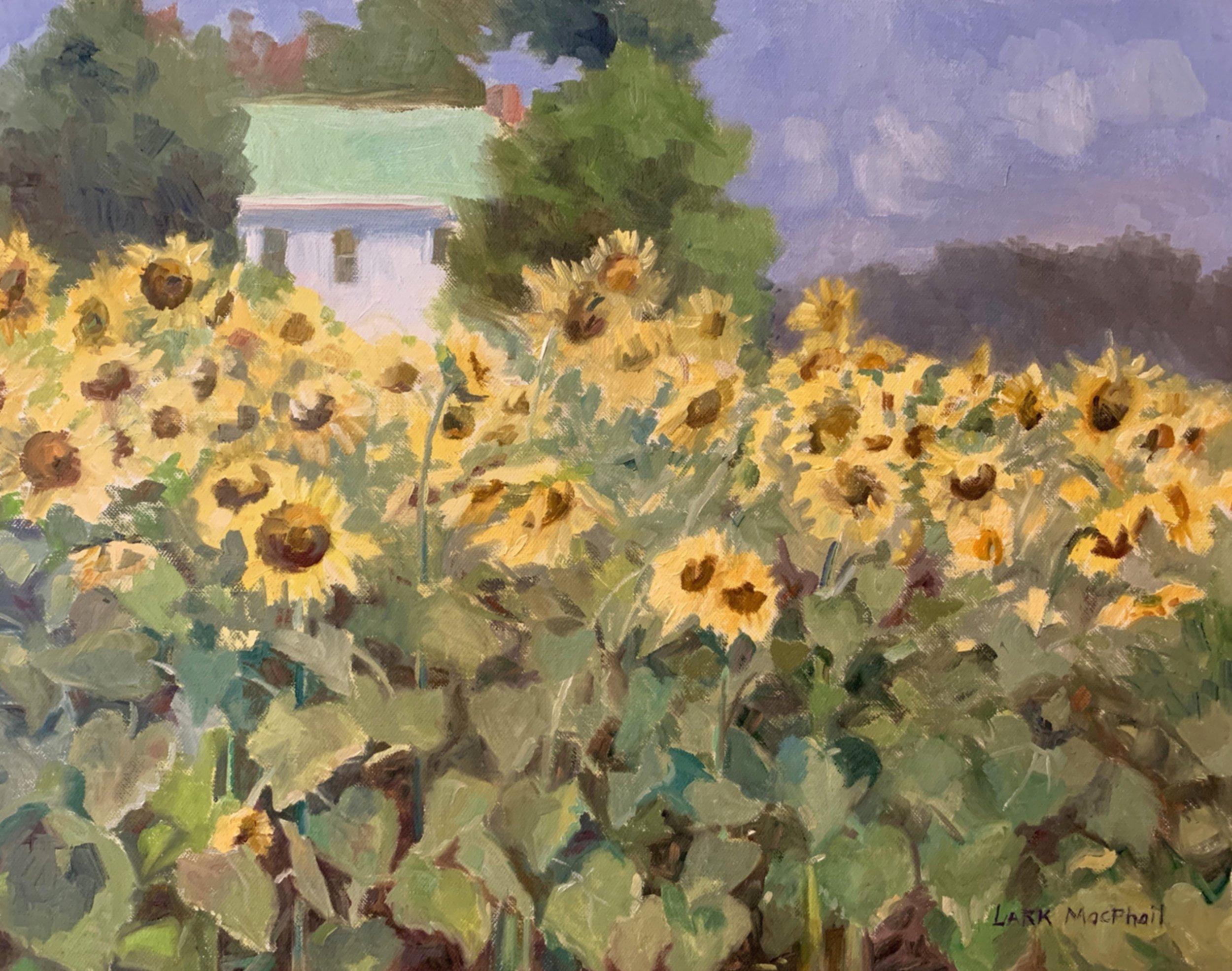 Sunflower Attitude 14 x 18