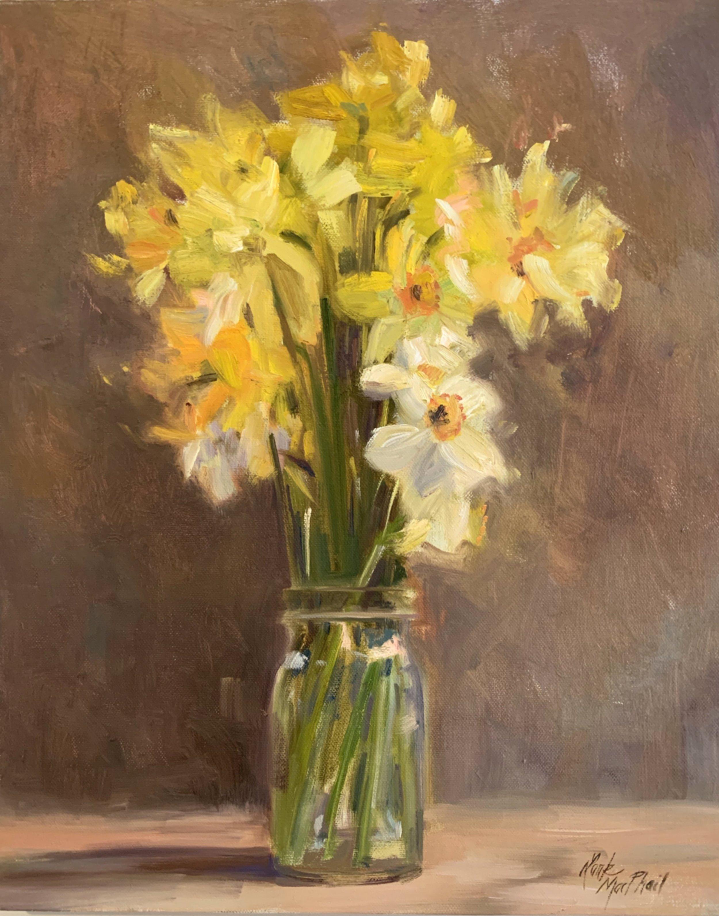 Yellow Daffodils 20 x 16