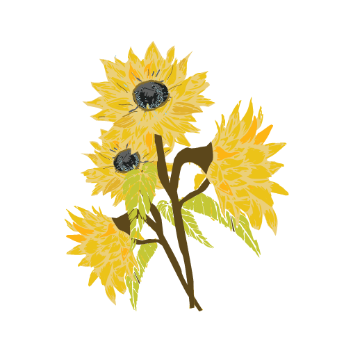 Sunflower3-02.png