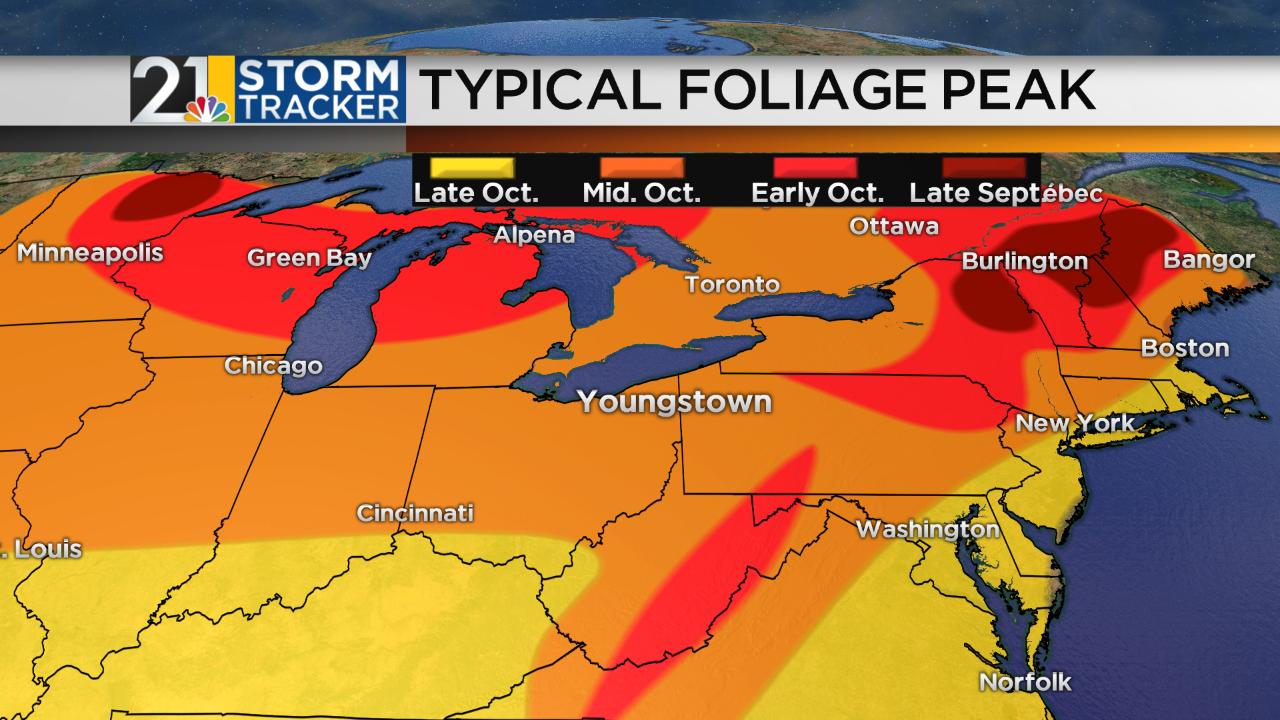 Foliage Map.png